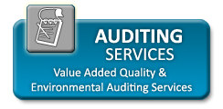QLS - Auditing Services